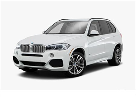 Picture for category BMW F15 X5