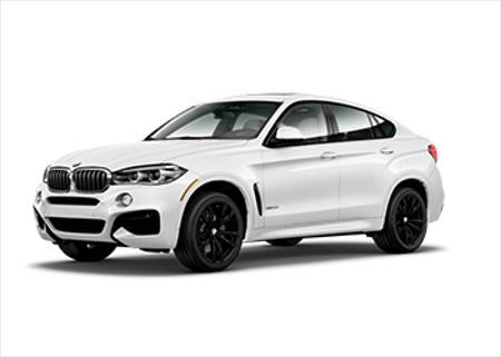 Picture for category BMW X6