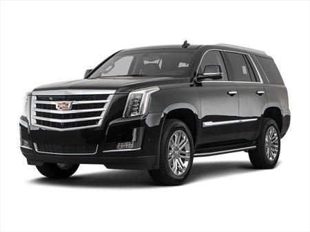 Picture for category ESCALADE